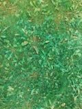 Backgroung della foglia e dell'erba Struttura dell'erba Immagini Stock Libere da Diritti