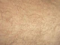 Backgroung della pelle Immagine Stock