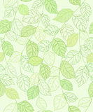 Backgroung sem emenda com folhetos verdes Foto de Stock Royalty Free
