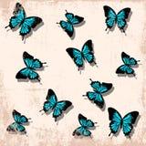 Backgrounnd d'annata della farfalla Fotografia Stock