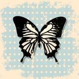 Backgrounnd d'annata della farfalla Immagine Stock