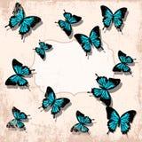 Backgrounnd d'annata della farfalla Immagine Stock Libera da Diritti