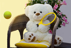 Backhand. The Teddy sits comfortably on the chair and plays a backhand Stock Image