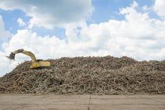 Backhoe εκσκαφέων στην εργασία το λαστιχένιο ξύλο ξυλείας Στοκ εικόνες με δικαίωμα ελεύθερης χρήσης