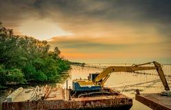 Backhoe выкапывает вдоль берега моря около мангровы для стоковая фотография rf