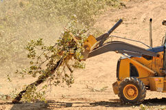 Backhoe Brush Stock Image