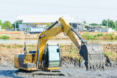 Backhoe working in mud swamp Stock Photo