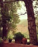 Backhouse в ourika, Марокко Стоковая Фотография