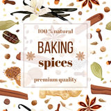 Backing spices big set Royalty Free Stock Image