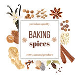 Backing spices big set under squire emblem. Royalty Free Stock Photos