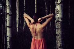 Backless dress in the woods Royalty Free Stock Photo