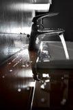 Backlight крупного плана раковины Стоковая Фотография