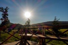Backlight Солнця стоковое изображение rf