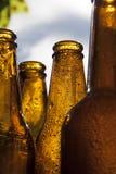 Backlight beer bottles. Backlit bottles of beer with hoarfrost Stock Photography