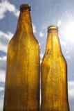 Backlight beer bottles. Backlit bottles of beer with hoarfrost Stock Photos