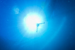 Backlight diver underwater Royalty Free Stock Photography
