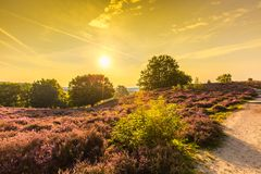Sunrise at Posbank Stock Photography