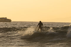 Backlight Silhouette Surfer. In the Ocean at Sunset Stock Images