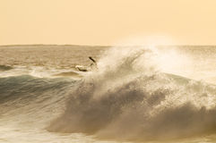 Backlight Silhouette Surfer. In the Ocean at Sunset Stock Image
