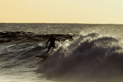 Backlight Silhouette Surfer Stock Photography