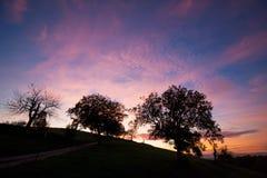 Backlight van een zonsondergang vóór nacht wordt geschoten die binnen in Lipburg dichtbij Badenweiler, Duitsland draaien dat Royalty-vrije Stock Fotografie
