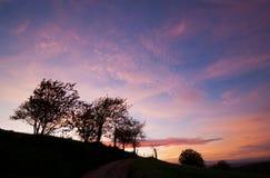 Backlight van een zonsondergang vóór nacht wordt geschoten die binnen in Lipburg dichtbij Badenweiler, Duitsland draaien dat Stock Fotografie