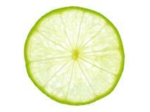 backlit зеленый ломтик лимона Стоковое Изображение