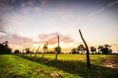 backlit туманнейший восход солнца солнечного света лета ландшафта Стоковое Изображение RF