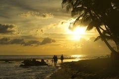Backlit, Beach, Caribbean stock photography