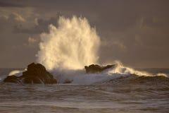 Backlit big wave splash at sunset Royalty Free Stock Image