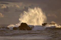 Backlit big wave splash at sunset Stock Images