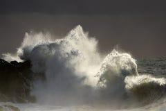 Backlit big wave splash at sunset Royalty Free Stock Photos