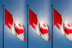 Backlit Canadian Flag Flags Royalty Free Stock Image