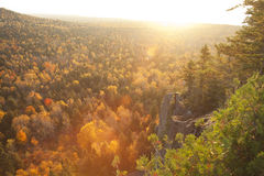 Backlit cliff and pines with lens flare above trees in fall colo Royalty Free Stock Photo