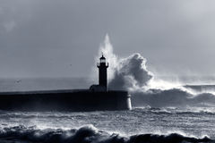 Backlit dramatic wave Royalty Free Stock Images