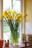Backlit gele narcissen in een familiekeuken Stock Afbeeldingen