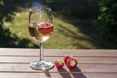 Backlit glass with sparkling wine and strawberries. On a tble in a grden Royalty Free Stock Photo