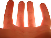 Backlit hand over white Stock Photos