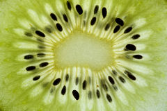 Backlit kiwi slice. Stock Images