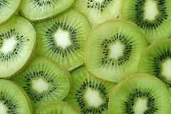 Backlit Kiwi Slice Stock Images