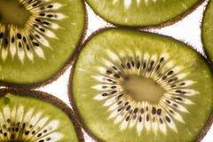 Backlit Kiwi Slices Royalty Free Stock Photography