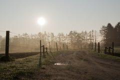Backlit pastures Stock Photos