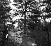 Backlit Path Over a Hill in Black and White Stock Photo