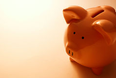Backlit pink piggy bank Stock Image