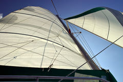 Backlit Sails Unfurled. And taking wind with a blue sky Royalty Free Stock Photography