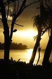 Backlit Silhouette by trees on the beach in the Seychelles Stock Photos