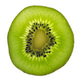 Backlit slice of fresh green kiwi fruit Stock Photo