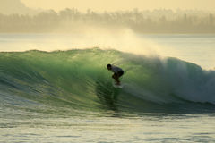 Backlit surfer in barrel, Mentawai, Indonesia Royalty Free Stock Photography
