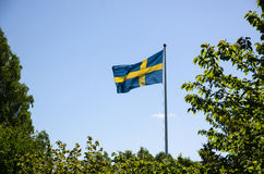 Backlit swedish flag Royalty Free Stock Image