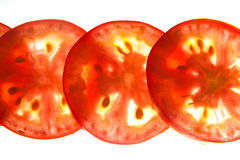 Backlit tomato slices Royalty Free Stock Photography
